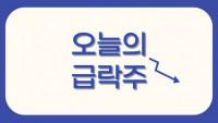 [오늘의 급락주] 세종케미칼·한주케미칼앤홀딩스·현대일렉트릭·더존비즈온, 급락 마감